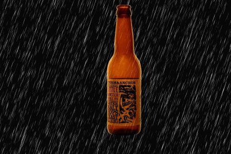 Bier13